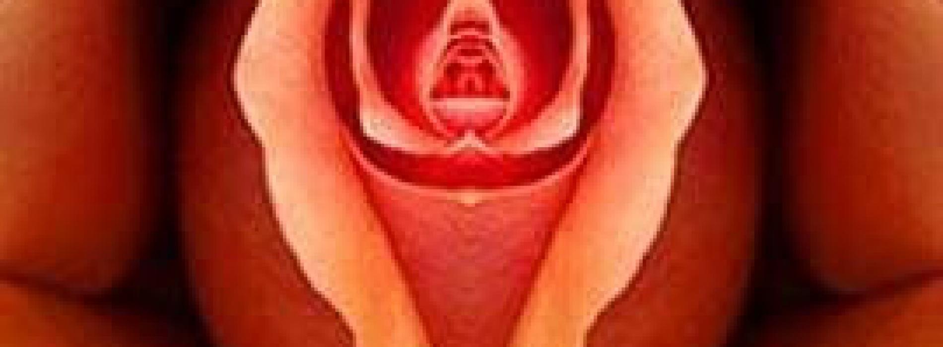 cursus erotische massage vrouwen die sex willen
