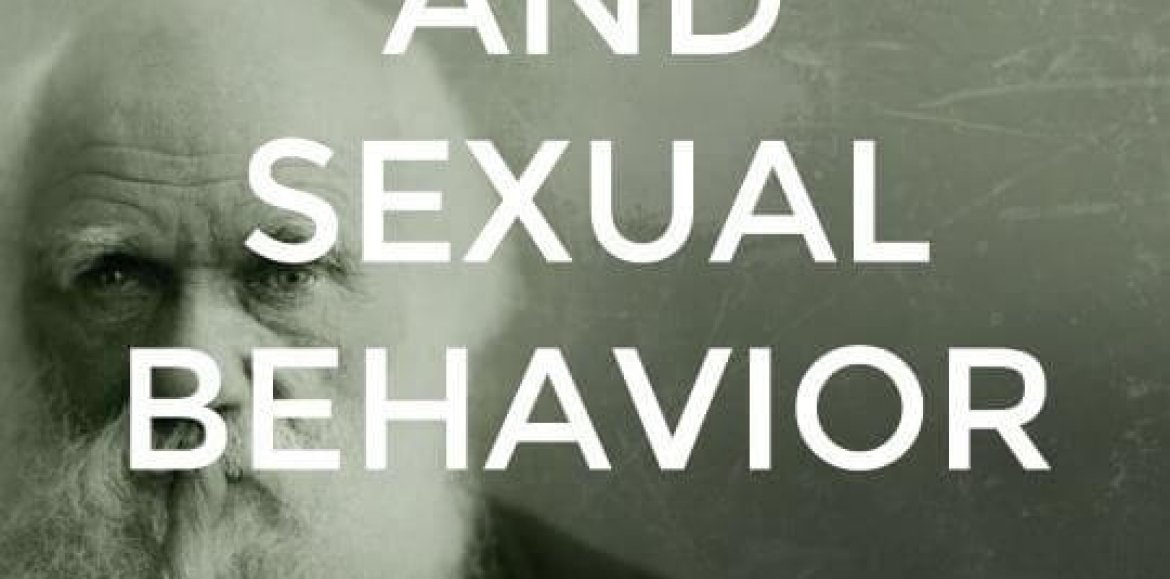 Dutch Lessons in Love Part 1: Sixty years of sexual evolution in the Netherlands