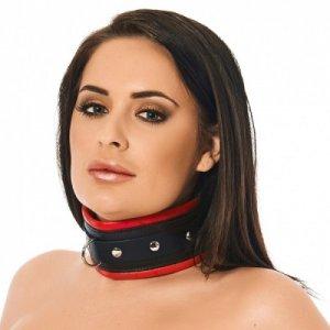 rimba-luxe-gevoerde-halsband-met-rode-rand