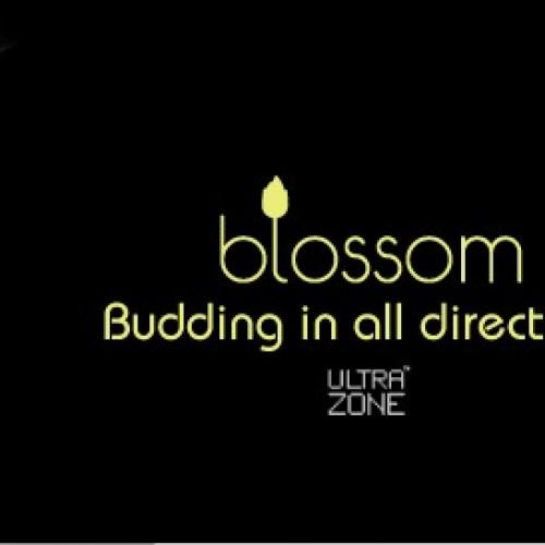 Ultrazone Blossom vibrators