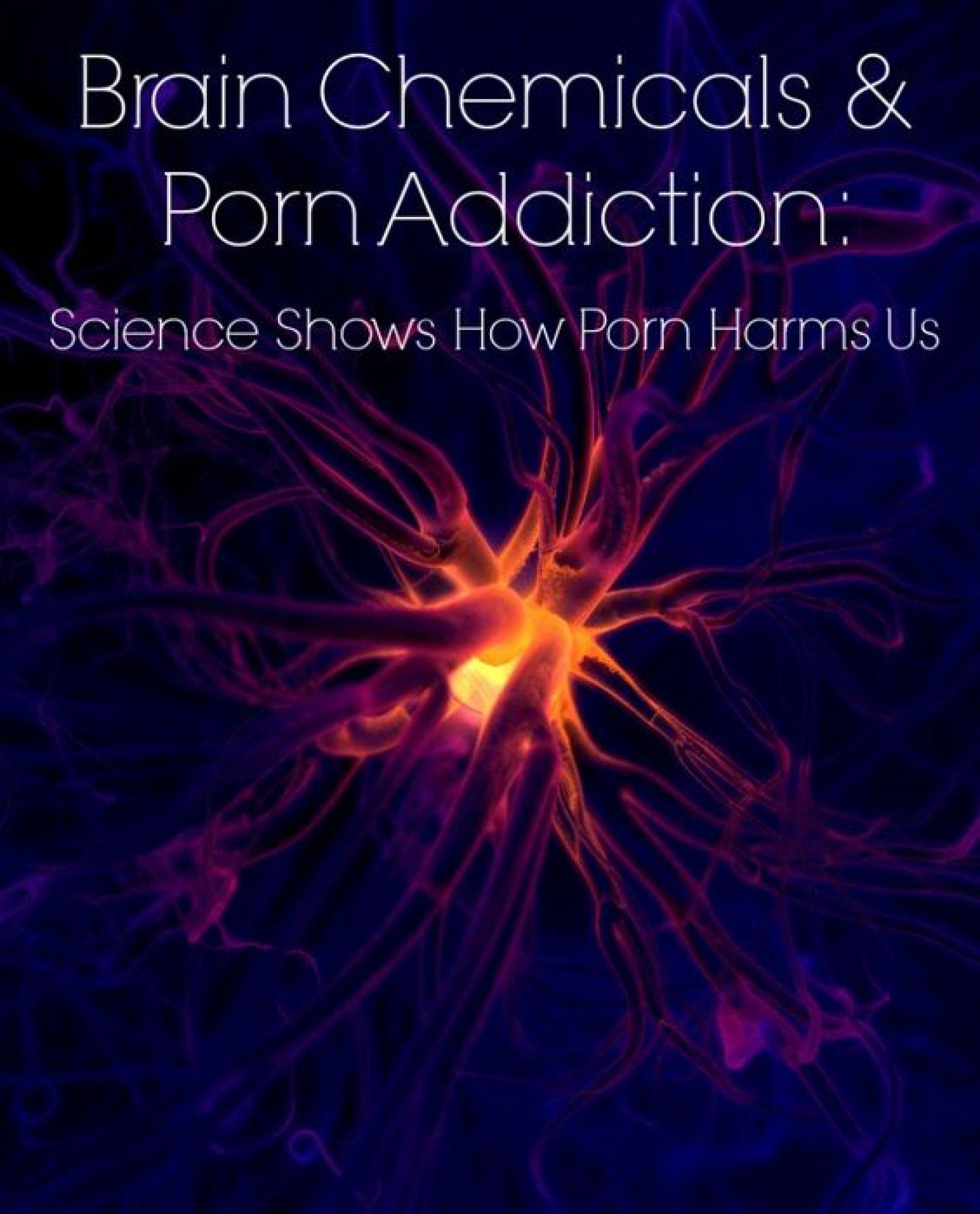 Het grote porno experiment
