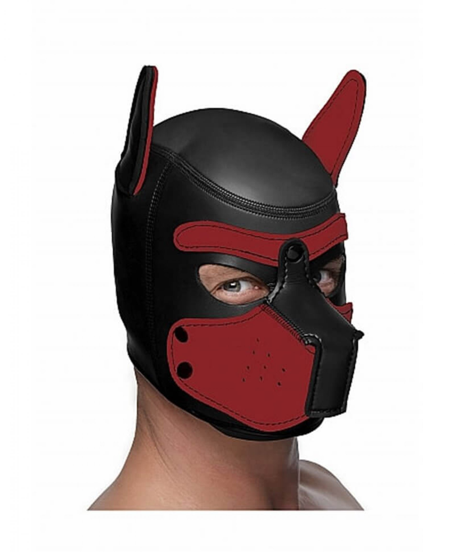 Master Series Neoprene puppy hood Black and Red