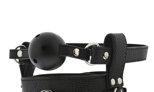Unboxing Dreamtoys Blaze breathable ball gag with collar